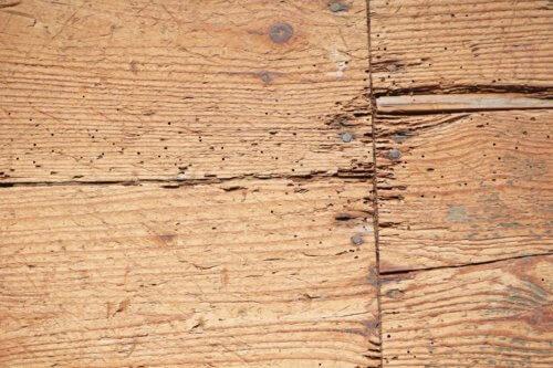 木材のひび割れやささくれ